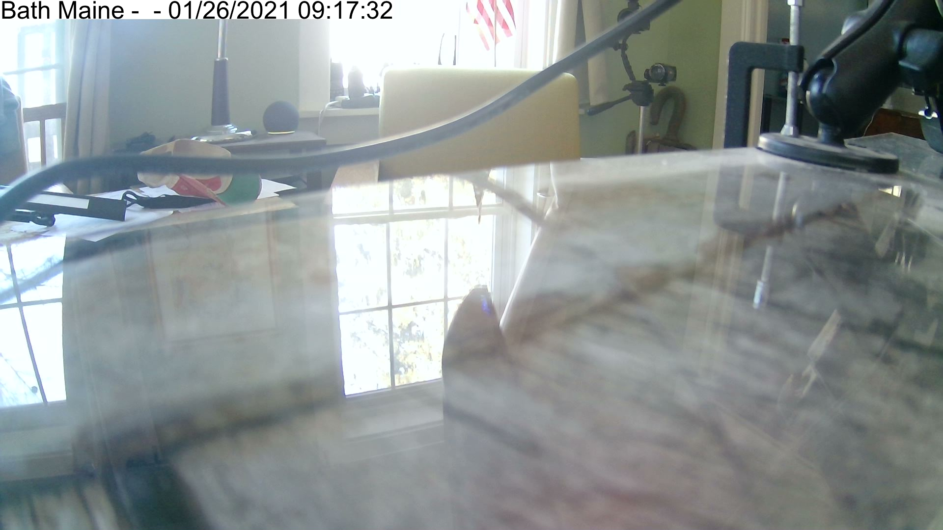Bath Maine Webcams