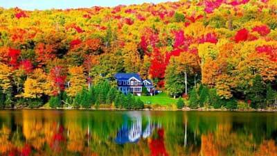 Best Maine Foliage Webcams