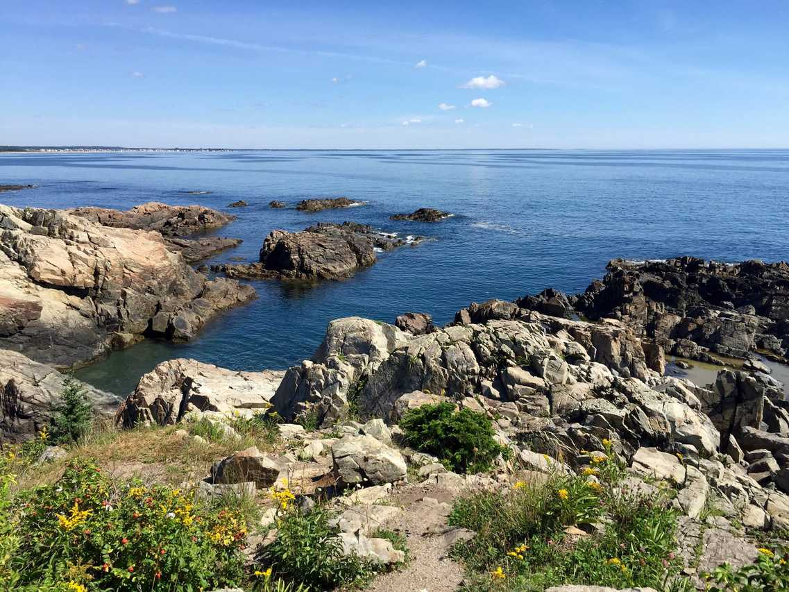 Portland Maine Webcam - Marginal Way [VIDEO]