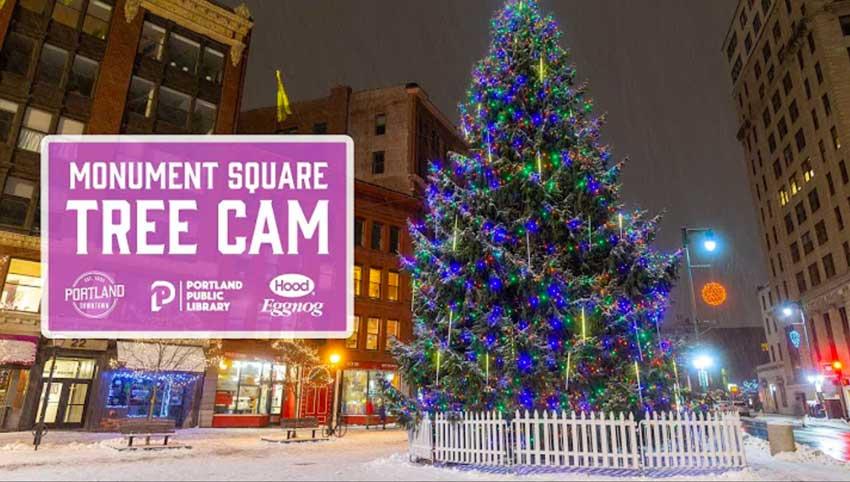 Monument Square Tree Cam Portland Maine